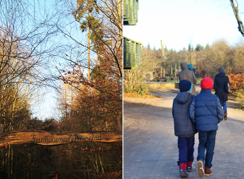 Trapen_Walk