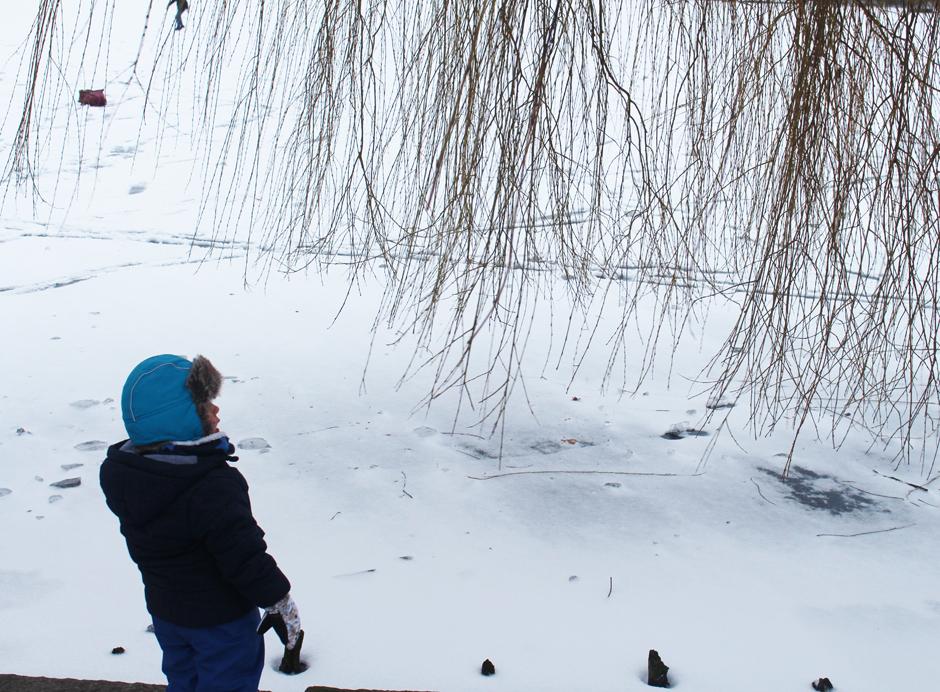 SchneeSchau