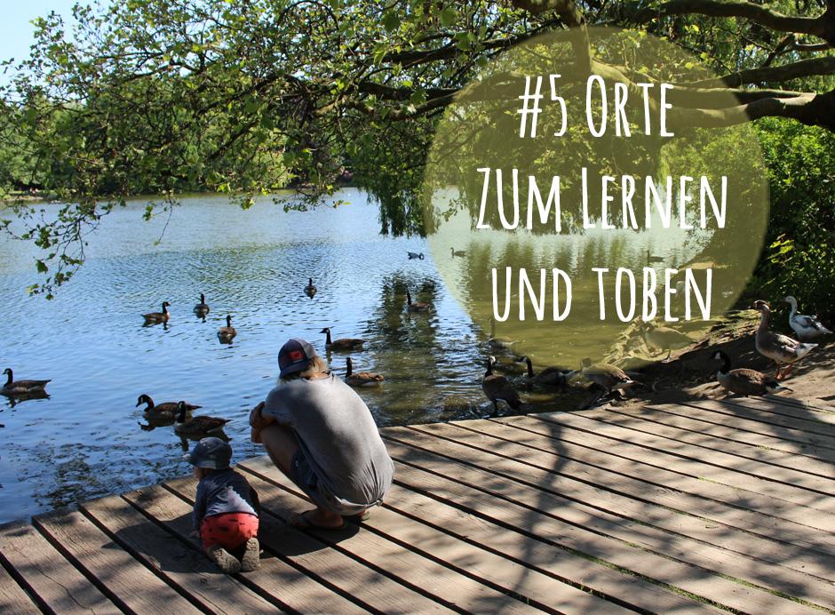 KaN_Sommer5_Doppeltreffer_Schrevenpark©kielamnil