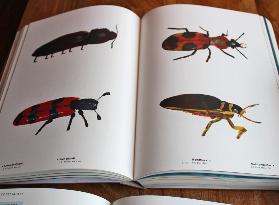 KaN_BücherTipps_ImGartenNaturMitKindern_3