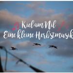 KielAmNil_Musik_Familien_SpotifyPlaylist_Herbst_FOTO(c)www.kielamnil.de
